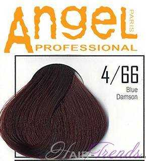 Angel professional 4-66