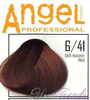 Angel professional 6-41