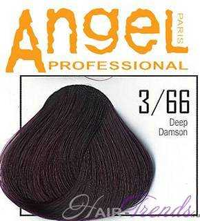 Angel professional 3-66