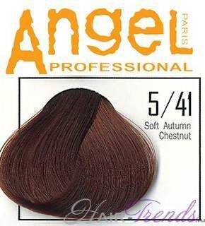 Angel professional 5-41