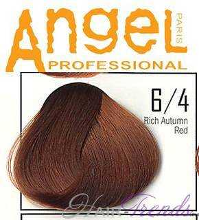 Angel professional 6-4