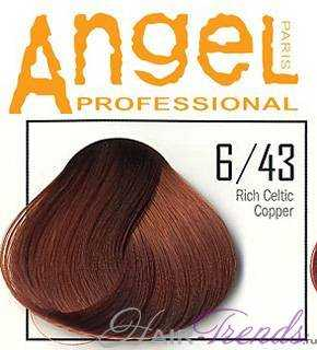 Angel professional 6-43