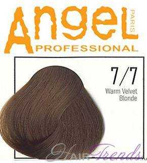 Angel professional 7/7